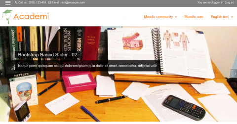 moodle-theme-1.png